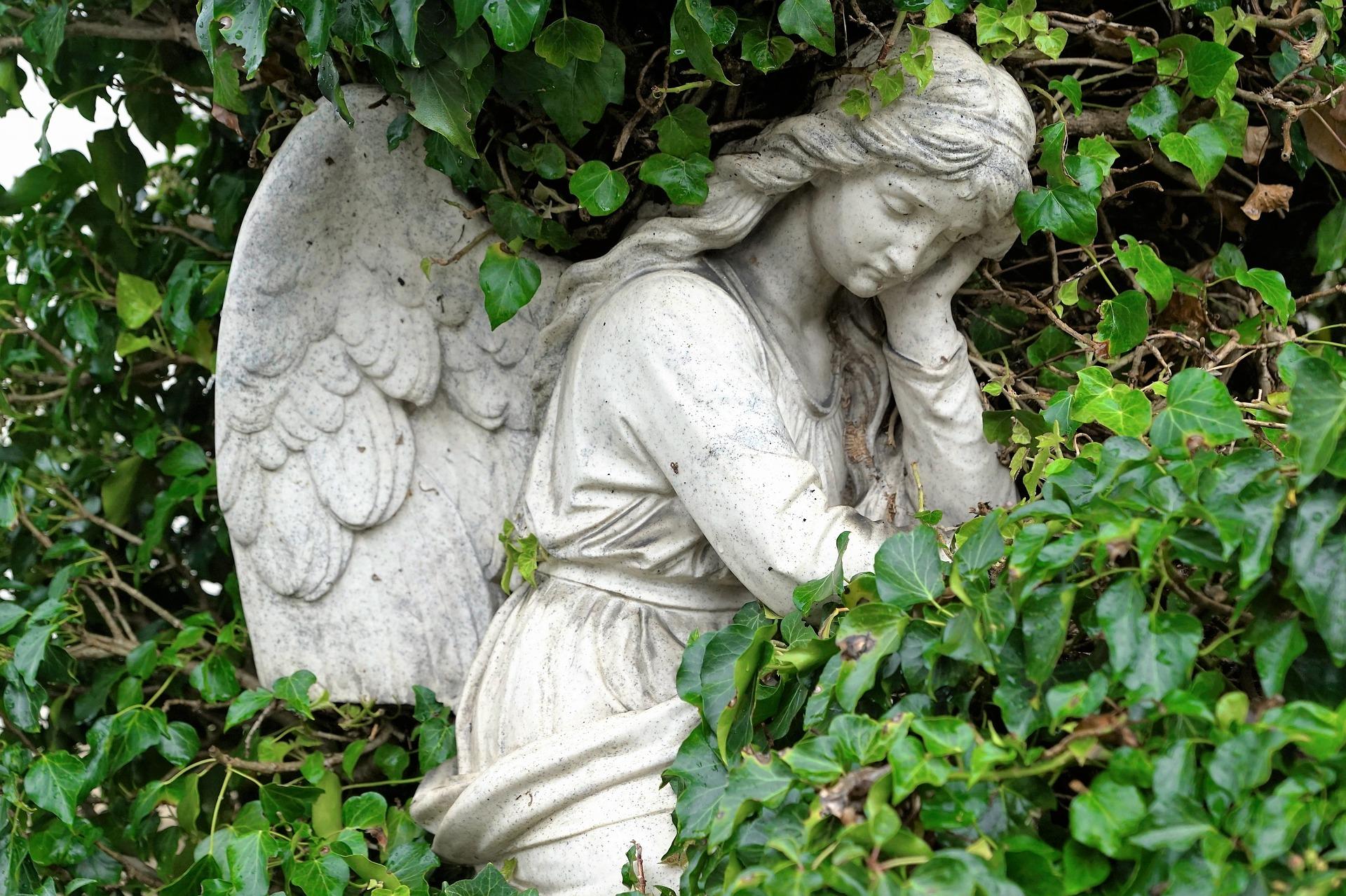 天使の石像の画像
