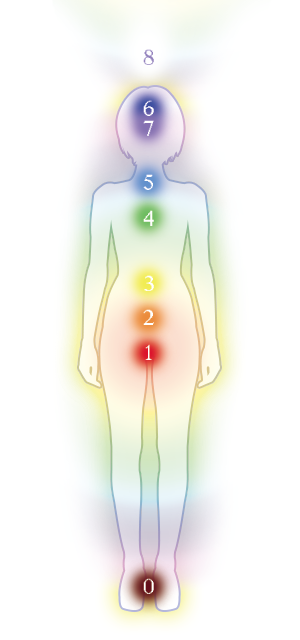 七つのチャクラと人間の身体