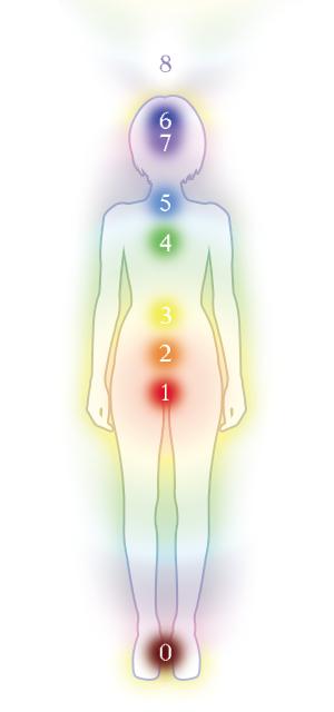 7つのチャクラと人間の身体