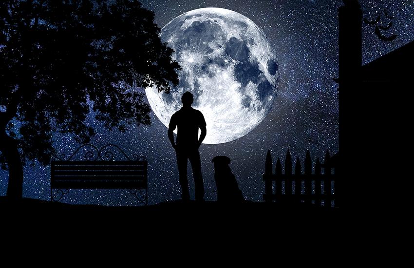 宇宙を見上げる人