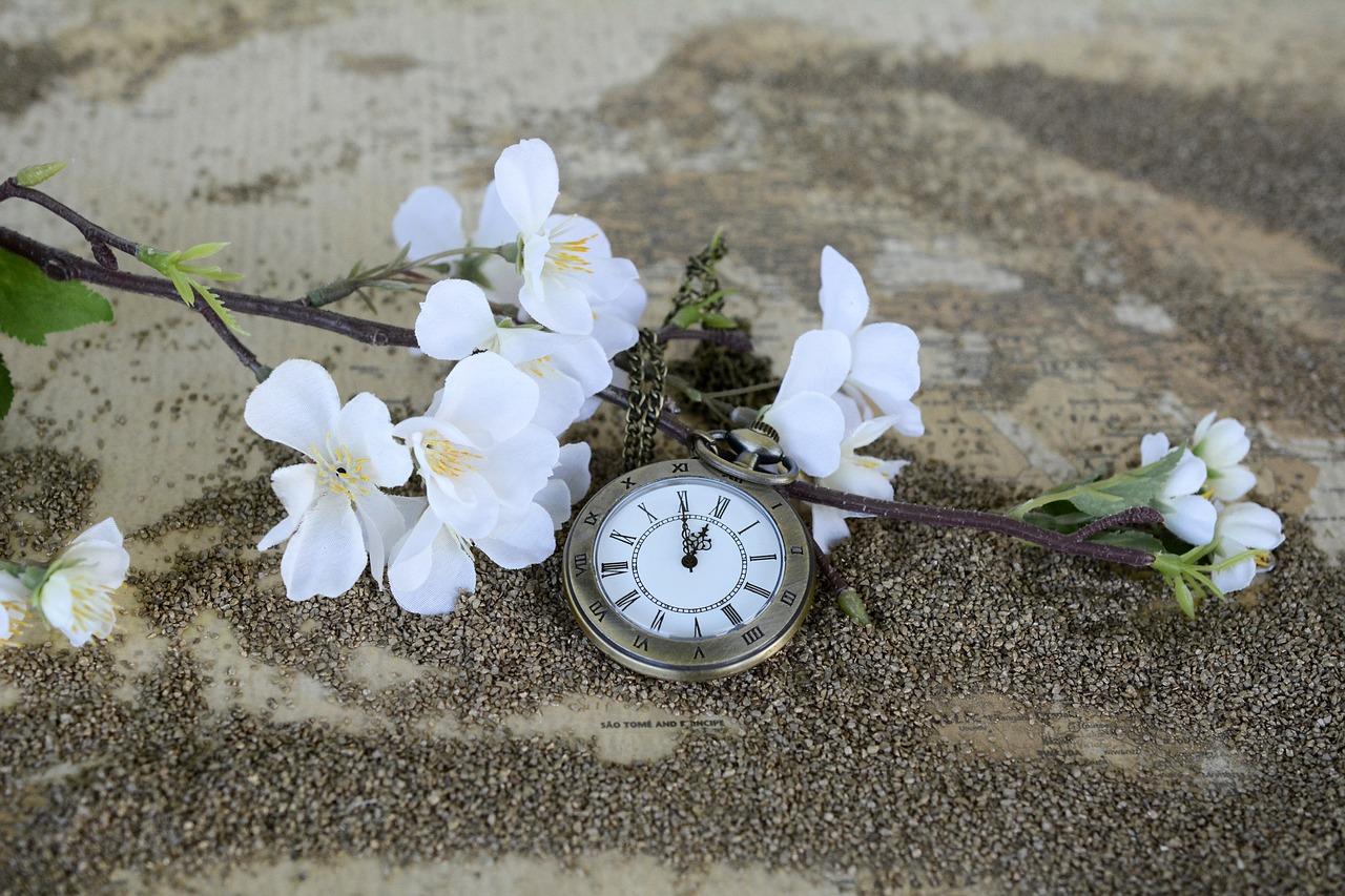 天空の庭先の化過去の時間を思い出させる懐中時計