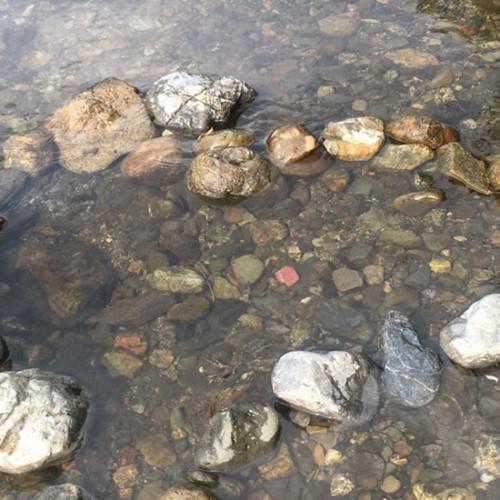 ハートの形に並べられた石