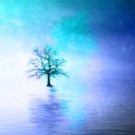 スピリチュアルな宇宙の木