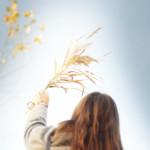 想念エネルギーと想念の使い方